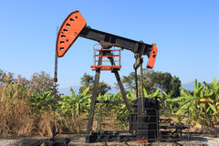 Oil Pump Jack (Sucker Rod Beam) in The Banana Field. On Sunny Day Royalty Free Stock Photos