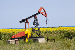 Oil pump with sunflowers field Royalty Free Stock Photography