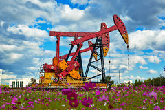 Oil pumping unit and flowers Royalty Free Stock Photography