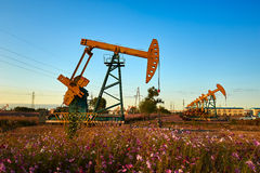 The oil pumping units sunset Royalty Free Stock Image