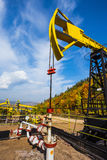 Oil Pumpon a background of forest in Russia royalty free stock image
