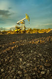 Oil pumps. Stock Photography