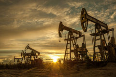 Oil pumps. Royalty Free Stock Image