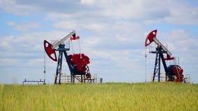 Oil pumps in a rye field stock footage