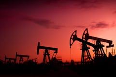 Oil pumps. Stock Photo
