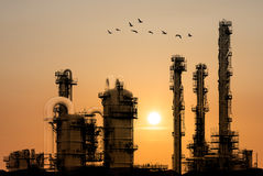 Oil raffinaderit under solnedgång med fåglar som by flyger Royaltyfri Fotografi
