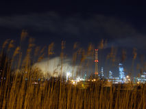 Oil refinery. Night oil refinery, night scene, light and oil refinery construction, foreground: reed stock images