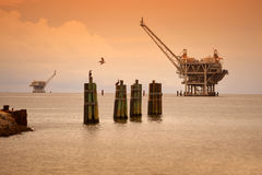 Oil Rig Platforms in Late Afternoon. With pelicans in foreground royalty free stock photo