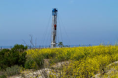 Oil Rig Surrounded By Ocean and Flowers Royalty Free Stock Image