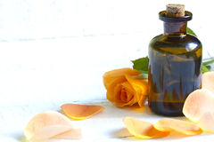 Oil rose with petals on wooden white background Stock Photo