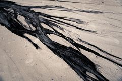 oil and sand beach Stock Photo