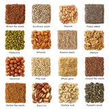 Oil seeds and nuts. With titels collection stock image