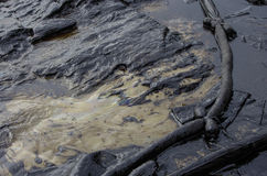 Oil spill on the Ao Prao beach, Koh Samet Island. Royalty Free Stock Image