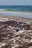 Oil Spill on the Beach June 2010 Stock Photo