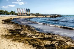 Oil spill clean up in Agios Kosmas bay, Athens, Greece, September 14 2017. royalty free stock photography