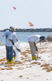 Oil spill workers at seashore Stock Images