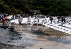 Oil spilled beach cleaning, Rayong, Thailand 2 Stock Photo