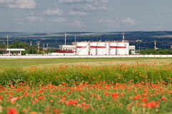 Oil storage at poppy field Stock Photos