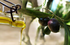 Oil stream and olives Royalty Free Stock Photography