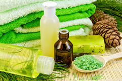 Oil and toiletries with cedar cones Royalty Free Stock Photography