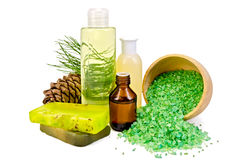 Oil with toiletries and cedar cones Stock Images
