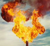 Oil torch Royalty Free Stock Photos