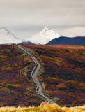 Oil Transport Alaska Pipeline Cuts Across Rugged Mountain Landsc. The large diameter pipe that cuts across the mountainous Alaska Landscape royalty free stock image