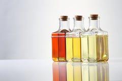 Oil. Various types of oil in bottles Royalty Free Stock Image