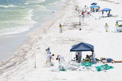 Oil washes ashore in Pensacola Beach royalty free stock image