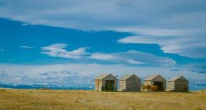 Barn Sky Horses Stock Images