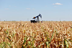 Oil well and corn field Stock Photo