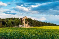 Oil well pump jack. In farmers canola field. Against cloudy blue-sky background Royalty Free Stock Photo