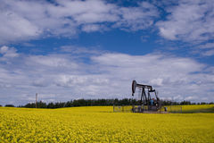 Oil well pump jack in yellow f stock photography