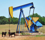 Oil well pumper. Yellow and blue oil well pumper in a field in Texas, USA Stock Images