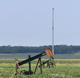 Oil Well. This is a Summer picture of a functioning oil well pumping in a bean Field located in Coles County, Illinois. This picture was taken on August 25, 2017 royalty free stock images
