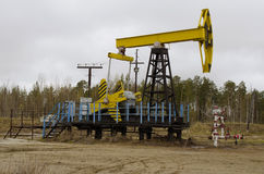 An oil well with a swinging rod pumping. Pumping unit - Individual mechanical actuator rod pump Stock Photo