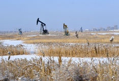 Oil Wells and reed Royalty Free Stock Photos