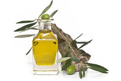 Oilcan with olive oil and a branch. Stock Photo