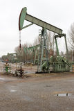Oilfield in operation. Pump-jack or horse-head pumping up crude oil from an oil well Stock Image