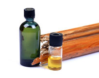 oils förhindrandetermiten Arkivfoton