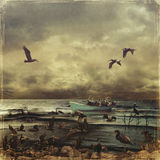 Oily Birds. Oil flood in the sea. Rescue of pelicans Stock Photography