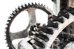Oily gears Stock Images