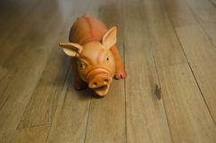 Oink!  A plastic dog toy/pig looks at the camera. A playful dog toy pig is scary Royalty Free Stock Photo