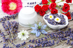 Ointment with lavender and roses Stock Image