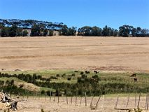 Ointressanna afrikanska jordbruksmarker Arkivbild