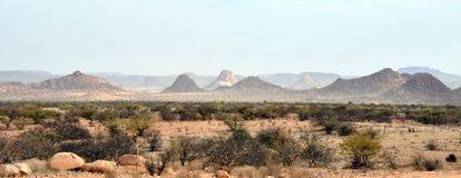Ointressant landskap av Namibia Royaltyfri Fotografi
