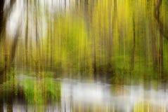Oirase的秋天颜色劈裂 免版税库存照片