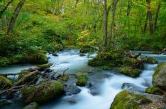 Oirase gorge in Aomori, Japan Stock Photo