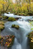 Oirase Stream in autumn of Japan Royalty Free Stock Images