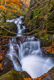 Oirase stream with small waterfall Royalty Free Stock Image